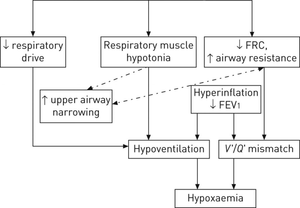 ( Pulmonary Function Analysis - Image Courtesy of err.ersjournals.com )