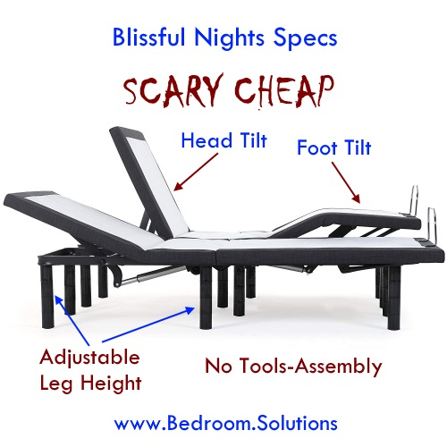 Blissful Nights Split King Adjustable Bed Review