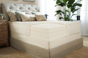 latex plush bed mattress